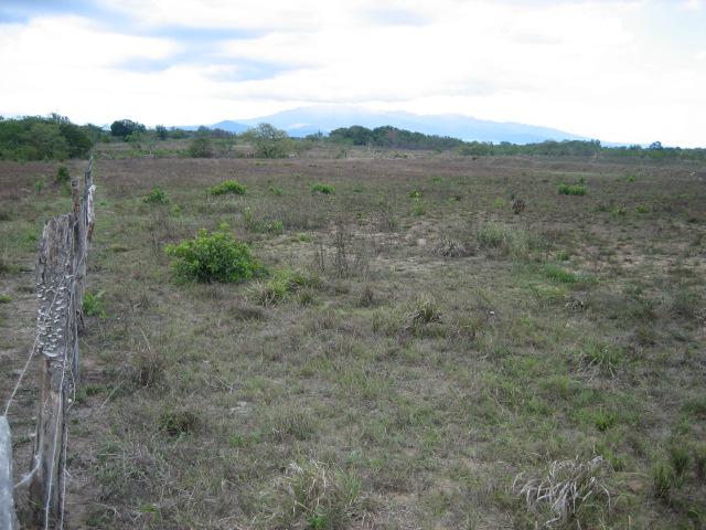 0905 Salasa property